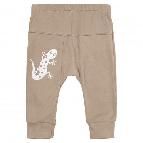 """Трикотажні штанці для хлопчиків """"Геккончик"""""""
